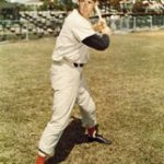 The Splendid Splinter: Ted Williams
