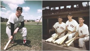 Ted Williams Sarasota