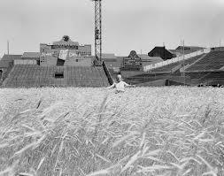 Braves Field 1953